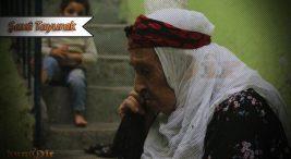 Kürt Aileleri