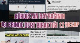 Kürdistan Bayrağının İçlerinde Dert Bıraktığı 12 Hesap