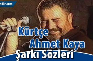 Kürtçe Ahmet Kaya Şarkıları