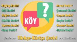Kürtçe köy anlamı