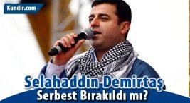 Selahaddin Demirtaş Neden Tutuklandı