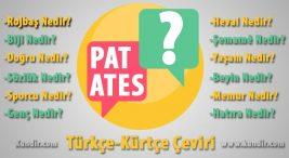 Kürtçe Patates Çevirisi