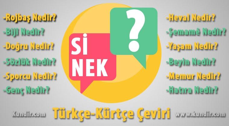 Kürtçe Sinek Çevirisi