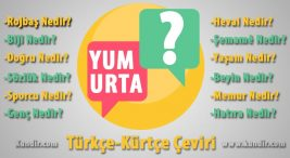 Kürtçe Yumurta Çevirisi
